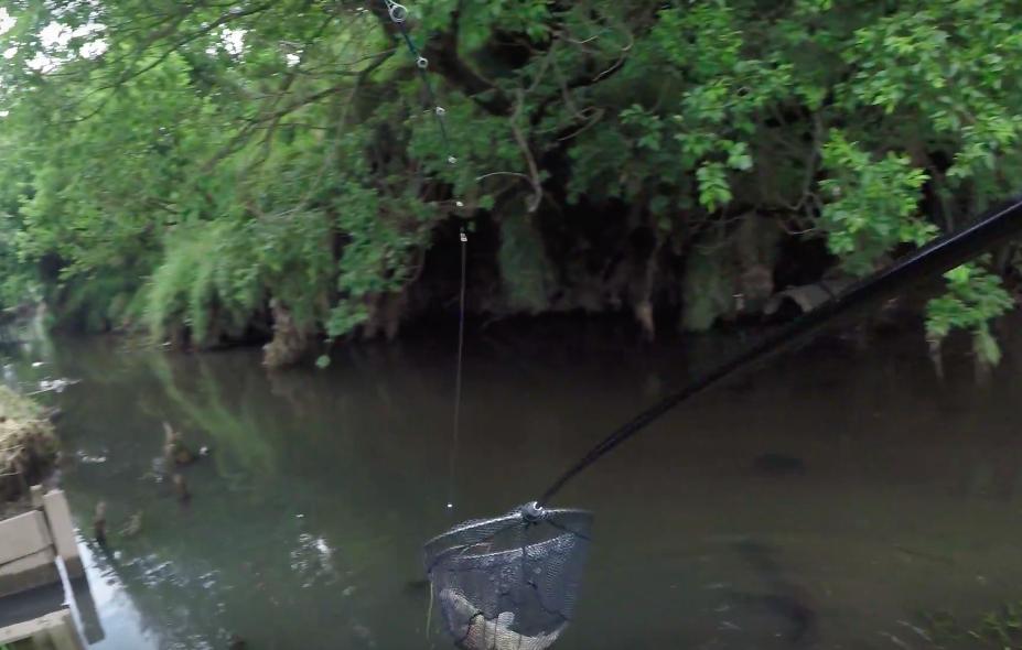 【おすすめのタモ網 】プロマリン ランディングセット300 レビュー!『釣り ネット』