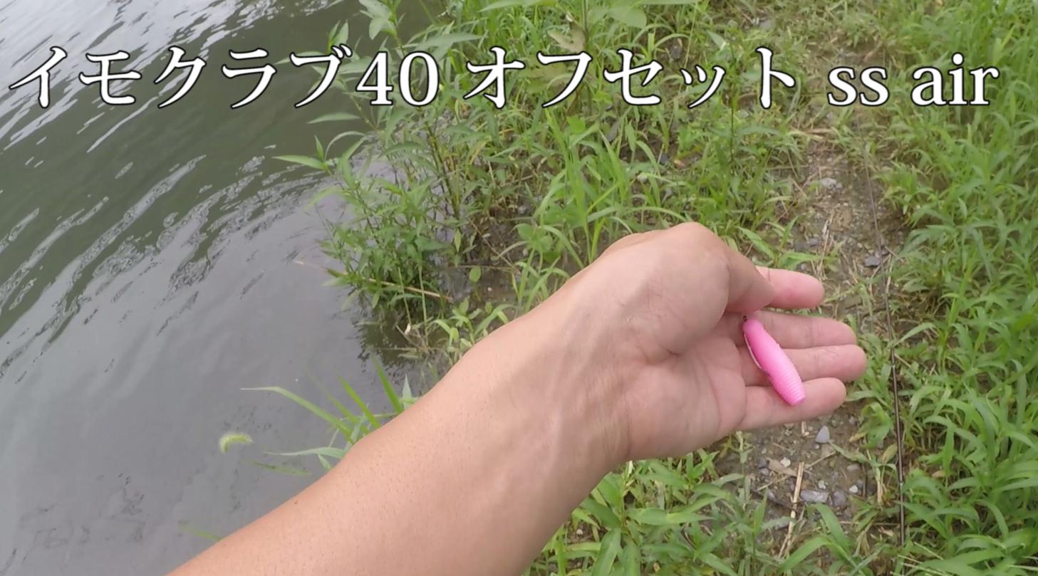 【ゲーリーヤマモト イモクラブ40 ピンク】 ベイトフィネスタックル「ss air」でスモールマウスバス釣り