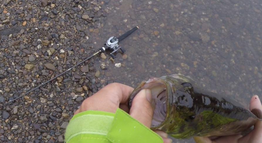 釣りで使われる「ポンド(lb.)とは?」ラインの号数と標準直径