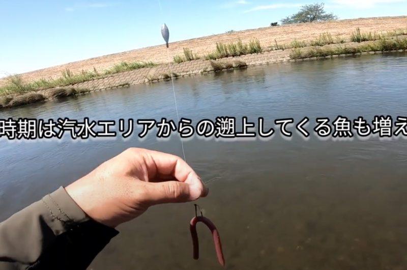 バス釣り ドリフトの釣りとは?川スモールにおすすめのワーム