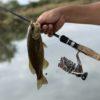 スモールマウスバス釣りにおすすめのハードルアー10選